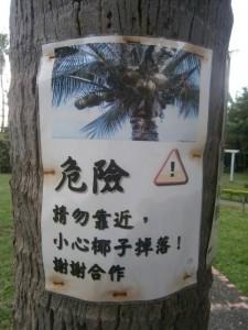 Attention! Chute de noix de coco!